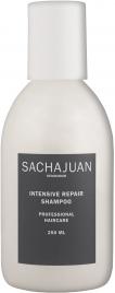Intensive Repair Shampoo (250 ml)